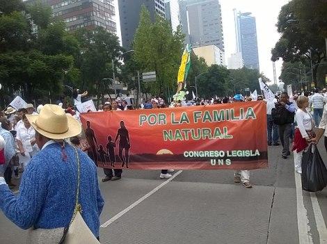 640px-Marcha_contra_el_matrimonio_igualitario_02._Ciudad_de_México